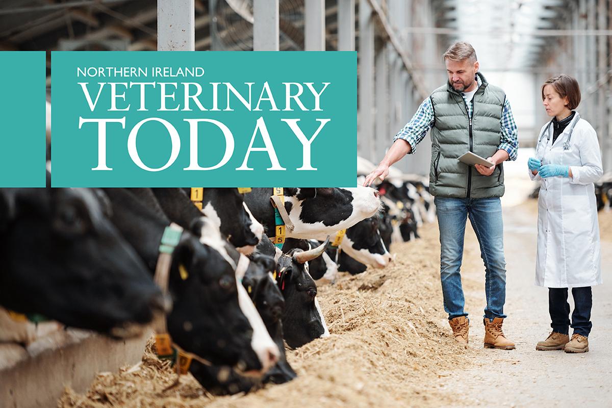 Northern Ireland Veterinary Today